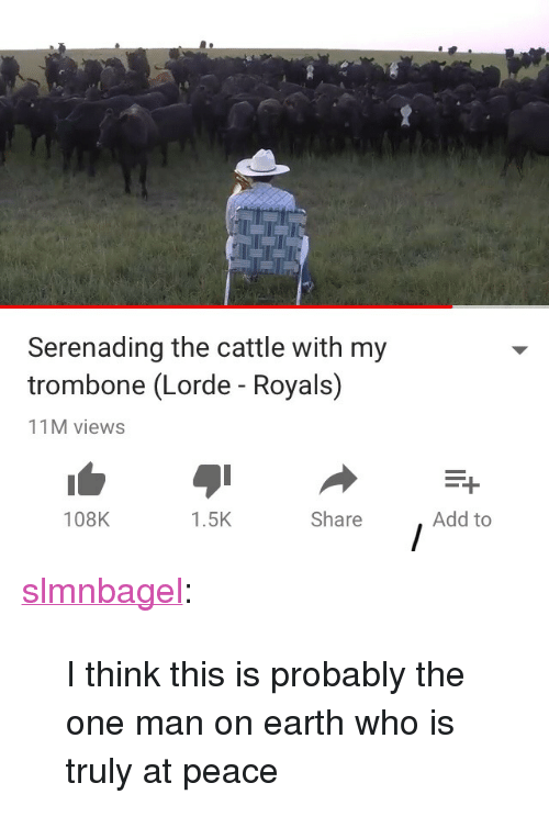 """Lorde, Target, and Tumblr: Serenading the cattle with my  trombone (Lorde - Royals)  11M views  108K  1.5K  Share  Add to <p><a href=""""http://slmnbagel.tumblr.com/post/172658322785/i-think-this-is-probably-the-one-man-on-earth-who"""" class=""""tumblr_blog"""" target=""""_blank"""">slmnbagel</a>:</p> <blockquote><p>I think this is probably the one man on earth who is truly at peace</p></blockquote>"""