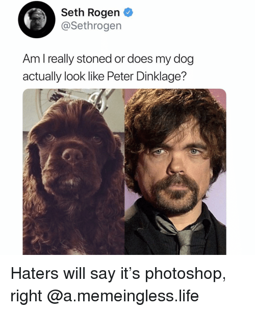 Peter Dinklage: Seth Rogen  @Sethrogen  Am l really stoned or does my dog  actually look like Peter Dinklage? Haters will say it's photoshop, right @a.memeingless.life