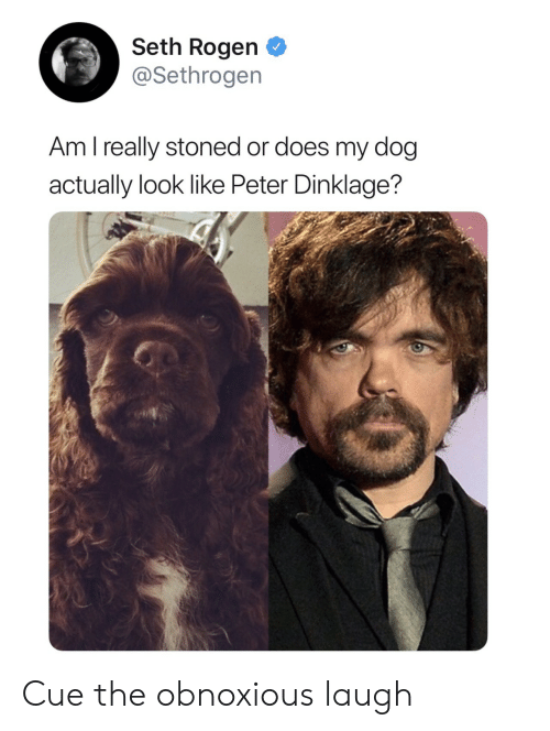 Peter Dinklage: Seth Rogen  @Sethrogen  Am l really stoned or does my dog  actually look like Peter Dinklage? Cue the obnoxious laugh