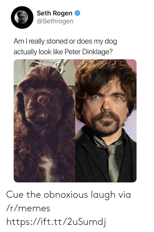 Peter Dinklage: Seth Rogen  @Sethrogen  Am l really stoned or does my dog  actually look like Peter Dinklage? Cue the obnoxious laugh via /r/memes https://ift.tt/2uSumdj