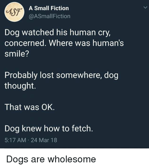 Dogs, Lost, and How To: Sf-  A Small Fiction  @ASmallFiction  Dog watched his human cry,  concerned. Where was human's  smile?  Probably lost somewhere, dog  thought.  That was OK.  Dog knew how to fetch.  5:17 AM 24 Mar 18 Dogs are wholesome