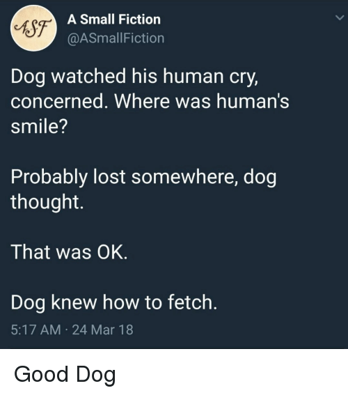 fetch: sg  A Small Fiction  @ASmallFiction  Dog watched his human cry,  concerned. Where was human's  smile?  Probably lost somewhere, dog  thought.  That was OK  Dog knew how to fetch.  5:17 AM 24 Mar 18 Good Dog