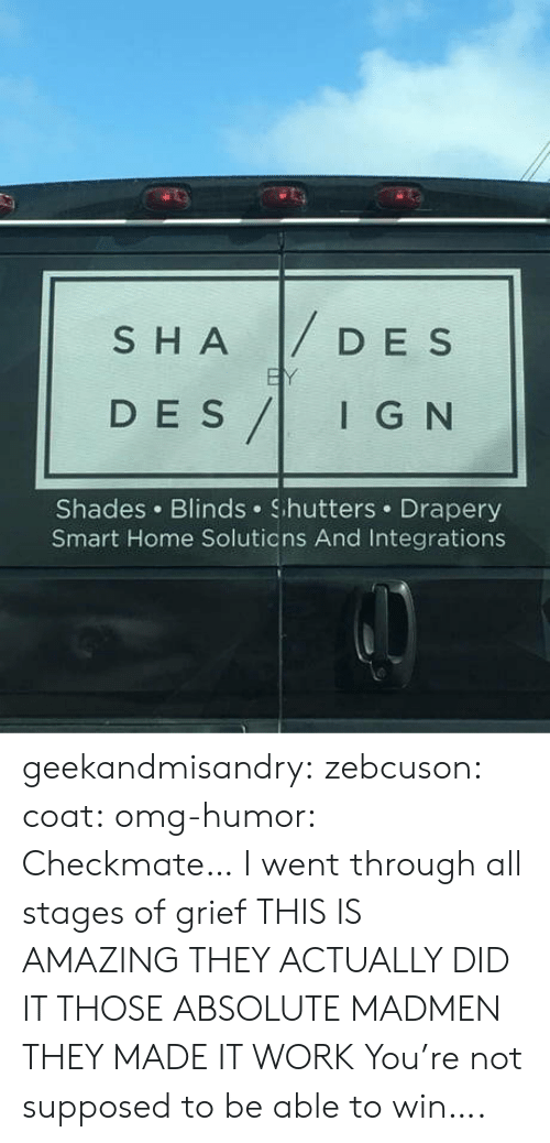 checkmate: SHADESs  D E S  DES/IG N  I G N  Shades Blinds Shutters Drapery  Smart Home Solutions And Integrations geekandmisandry: zebcuson:  coat:  omg-humor: Checkmate…  I went through all stages of grief   THIS IS AMAZING THEY ACTUALLY DID IT THOSE ABSOLUTE MADMEN THEY MADE IT WORK   You're not supposed to be able to win….