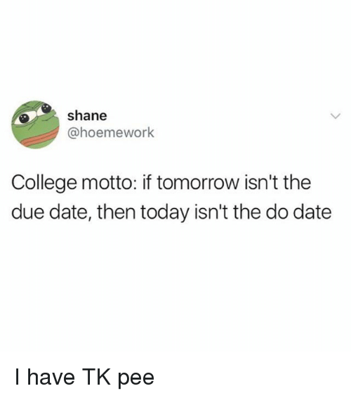 College, Date, and Today: shane  @hoemework  College motto: if tomorrow isn't the  due date, then today isn't the do date I have TK pee