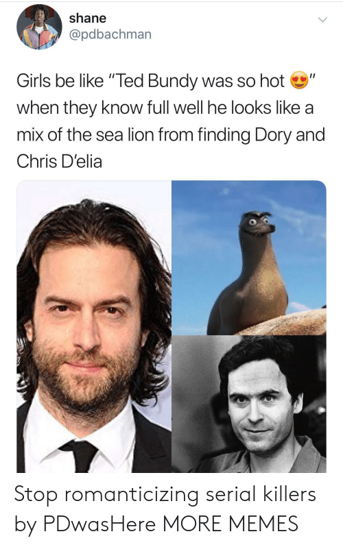 "Be Like, Dank, and Girls: shane  @pdbachman  Girls be like ""Ted Bundy was so hot""  when they know full well he looks like a  mix of the sea lion from finding Dory and  Chris D'elia Stop romanticizing serial killers by PDwasHere MORE MEMES"