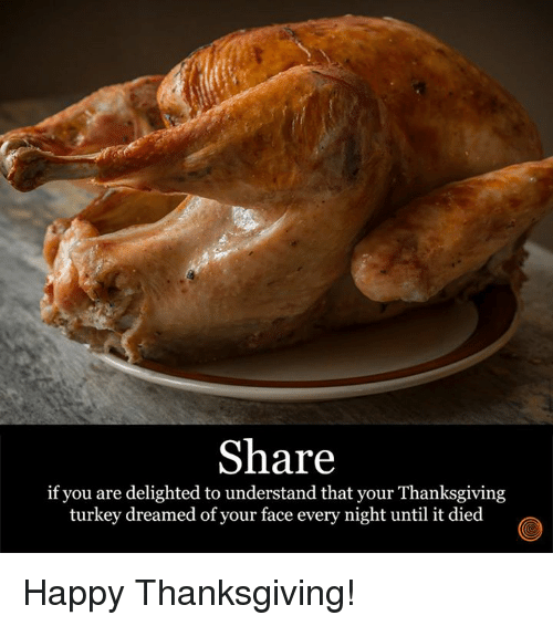thanksgiving turkey: Share  if you are delighted to understand that your Thanksgiving  turkey dreamed of your face every night until it died Happy Thanksgiving!