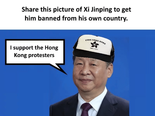 Hong Kong: Share this picture of Xi Jinping to get  him banned from his own country.  FREE HONG KONG  I support the Hong  Kong protesters