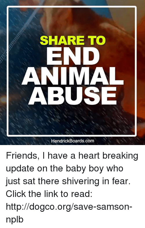 Animal Abuse: SHARE TO  END  ANIMAL  ABUSE  Hendrick Boards.com Friends, I have a heart breaking update on the baby boy who just sat there shivering in fear.  Click the link to read: http://dogco.org/save-samson-nplb