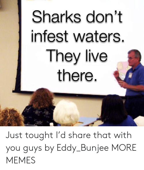 waters: Sharks don't  infest waters.  They live  there Just tought I'd share that with you guys by Eddy_Bunjee MORE MEMES