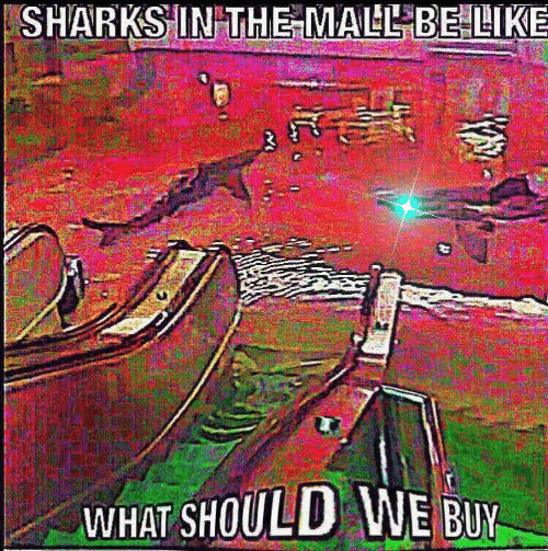 mall: SHARKS IN THE MALL BELIKE  WHAT SHOULD WE BUY