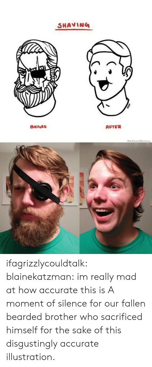Target, Tumblr, and Blog: SHAVING  BEFORE  AFTER  WeKnowMemes ifagrizzlycouldtalk:  blainekatzman:  im really mad at how accurate this is  A moment of silence for our fallen bearded brother who sacrificed himself for the sake of this disgustingly accurate illustration.