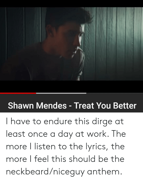 Shawn Mendes Treat You Better I Have to Endure This Dirge at