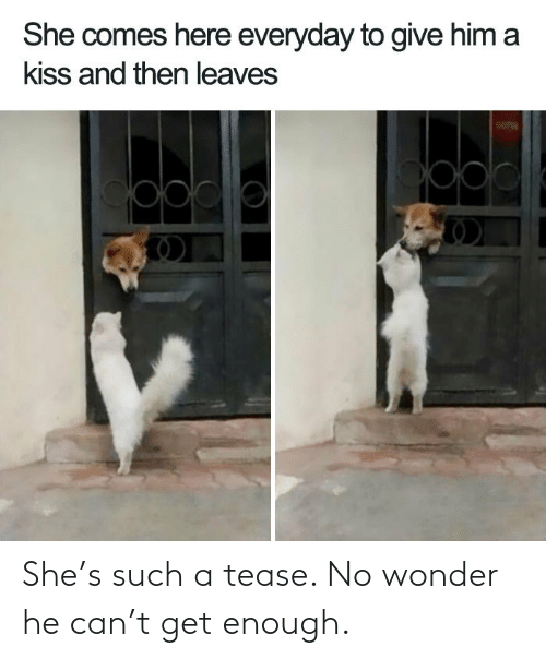 Wonder: She's such a tease. No wonder he can't get enough.