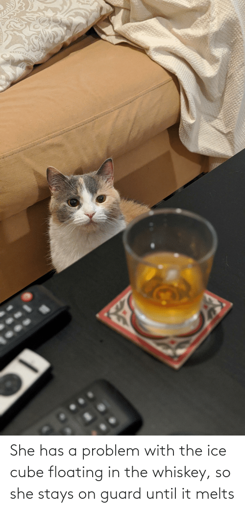 Ice Cube, Whiskey, and Ice: She has a problem with the ice cube floating in the whiskey, so she stays on guard until it melts