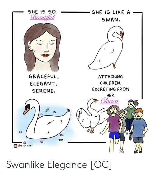 Attacking: SHE IS SO  Beautiful  SHE IS LIKE A  SWAN.  GRACEFUL,  ATTACKING  CHIL DREN,  ELEGANT,  EXCRETING FROM  SERENE.  HER  Cloaca  O@BigMither Swanlike Elegance [OC]