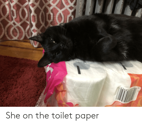 On The Toilet: She on the toilet paper
