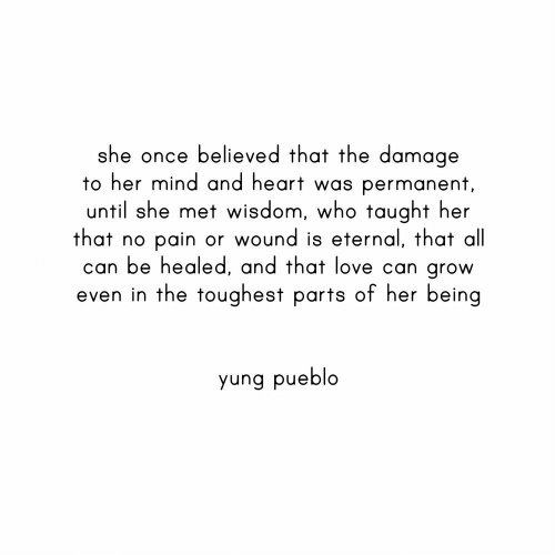 Love, Heart, and Mind: she once believed that the damage  to her mind and heart was permanent,  until she met wisdom, who taught her  that no  can be healed, and that love can grow  even in the toughest parts of her being  pain or wound is eternal, that all  yung pueblo