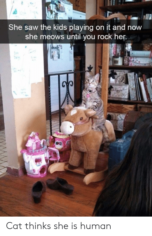 Saw, Kids, and Her: She saw the kids playing on it and now  she meows until you rock her. Cat thinks she is human