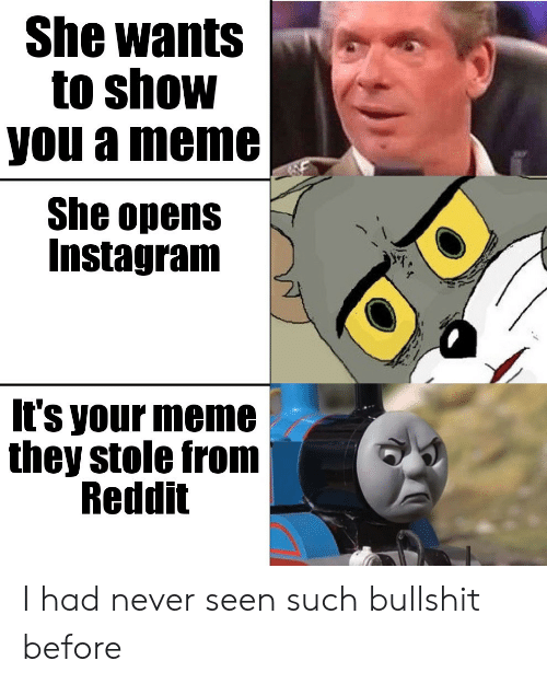 Instagram, Meme, and Reddit: She wants  to show  you a meme  She opens  Instagram  It's your meme  they stole from  Reddit I had never seen such bullshit before