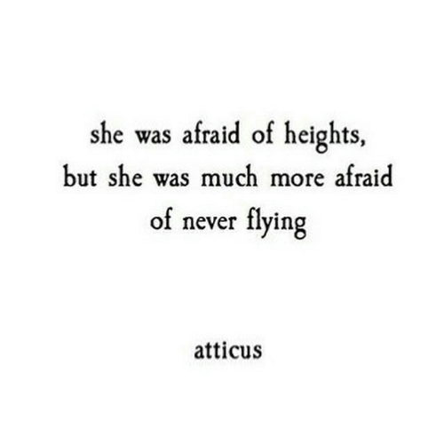 atticus: she was afraid of heights,  but she was much more afraid  of never flying  atticus