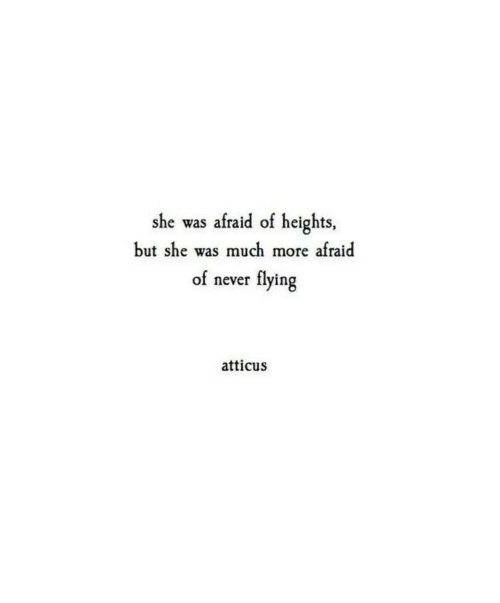 Never, She, and Atticus: she was afraid of heights  but she was much more afraid  flying  of never  atticus