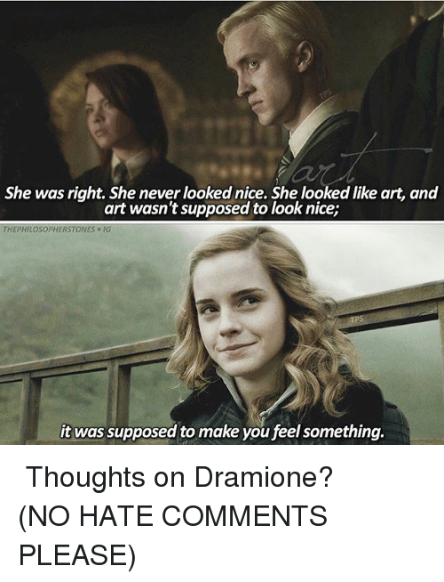 Hate Comments: She was right. She never looked nice. She looked like art, and  art wasn't supposed to look nice;  THEPHILOSOPHERSTONES-IG  it was supposed to make you feel something. ⠀⠀⠀⠀↡ Thoughts on Dramione? (NO HATE COMMENTS PLEASE)