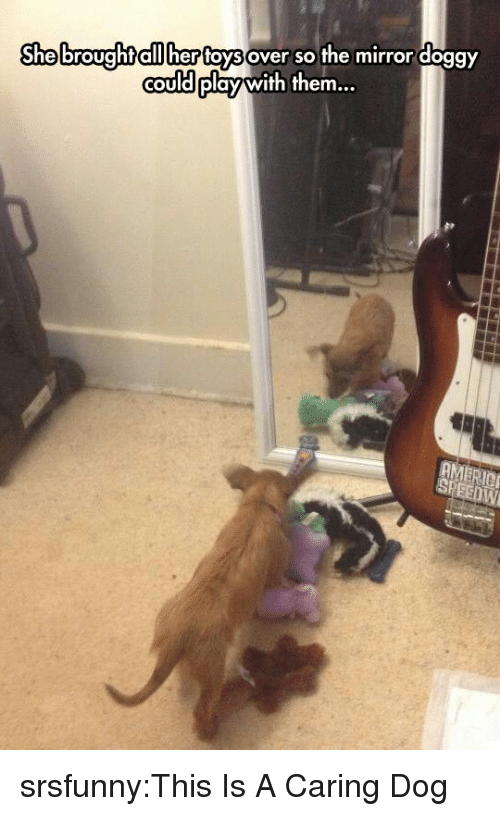 Cou: Shebroughtaiilher foysover so the mirror doggY  couldplay with them.  COU srsfunny:This Is A Caring Dog