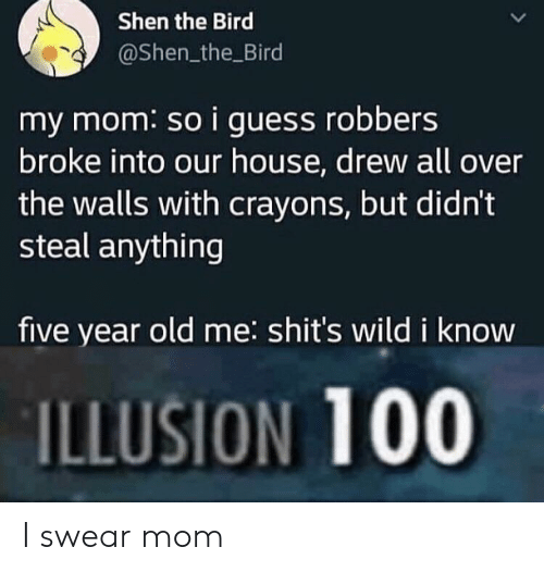 robbers: Shen the Bird  @Shen_the Bird  my mom: so i guess robbers  broke into our house, drew all over  the walls with crayons, but didn't  steal anything  five year old me: shit's wild i know  ILLUSION 100 I swear mom