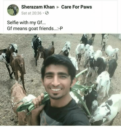 Friends, Selfie, and Goat: Sherazam KhanCare For Paws  Sat at 20:36 S  Selfie with my Gf...  Gf means goat friends...-P