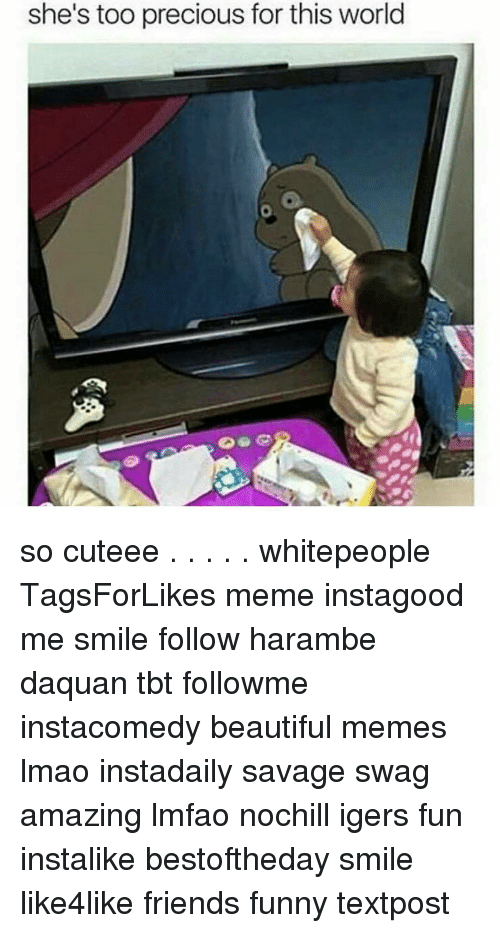 Haramber: she's too precious for this world so cuteee . . . . . whitepeople TagsForLikes meme instagood me smile follow harambe daquan tbt followme instacomedy beautiful memes lmao instadaily savage swag amazing lmfao nochill igers fun instalike bestoftheday smile like4like friends funny textpost