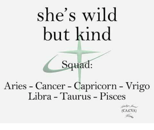 Squad, Aries, and Cancer: she's wild  but kind  Squad:  Aries - Cancer - Capricorn - Vrigo  Libra - Taurus Pisces  (CA.CVA)