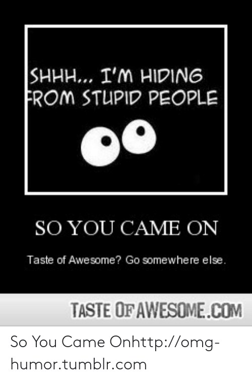 Hiding From: SHHH... I'M HIDING  FROM STUPID PEOPLE  SO YOU CAME ON  Taste of Awesome? Go somewhere else.  TASTE OF AWESOME.COM So You Came Onhttp://omg-humor.tumblr.com
