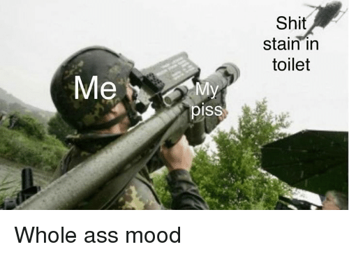 Ass, Mood, and Shit: Shit  stain irn  toilet  piss Whole ass mood