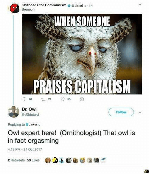 orgasming: Shitheads for Communism @dinksinc 1h  Bruuuuh  WHEN SOMEONE  PRAISES CAPITALISM  64  255  Dr. Owl  ausdotand  Follow  Replying to edinksinc  Owl expert here! (Ornithologist) That owl is  in fact orgasming  4:18 PM-24 Oct 2017  2 Retweets 53 Likes