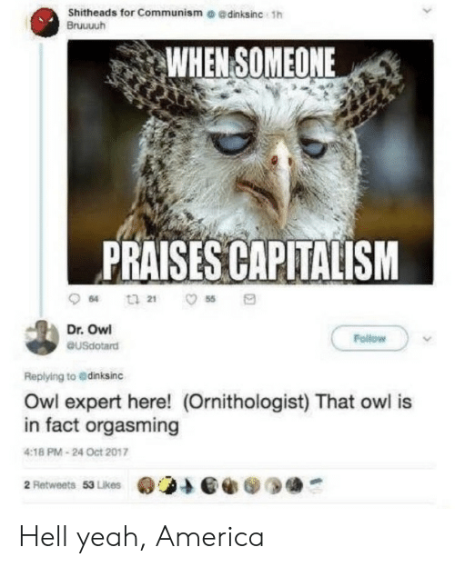 Oct 2017: Shitheads for Communism e edinksinc 1h  Bruuuuh  WHEN SOMEONE  PRAISES CAPITALISM  64  55  Dr. Owl  Follow  eusdotard  Replying to @dinksinc  Owl expert here! (Ornithologist) That owl is  in fact orgasming  4:18 PM-24 Oct 2017  2 Retweets 53 Likes Hell yeah, America