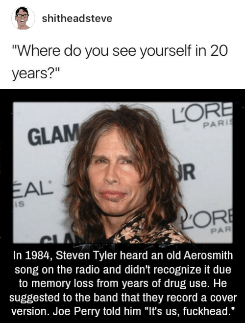 """Steven Tyler: shitheadsteve  """"Where do you see yourself in 20  years?""""   GLAM  PARİ  EAL  PAR  In 1984, Steven Tyler heard an old Aerosmith  song on the radio and didn't recognize it due  to memory loss from years of drug use. He  suggested to the band that they record a cover  version. Joe Perry told him """"It's us, fuckhead."""""""