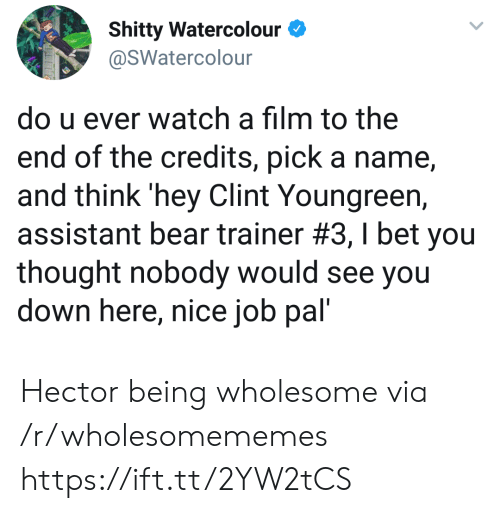 trainer: Shitty Watercolour  @SWatercolour  do u ever watch a film to the  end of the credits, pick a name  and think 'hey Clint Youngreen,  assistant bear trainer #3 , I bet you  thought nobody would see you  down here, nice job pal' Hector being wholesome via /r/wholesomememes https://ift.tt/2YW2tCS