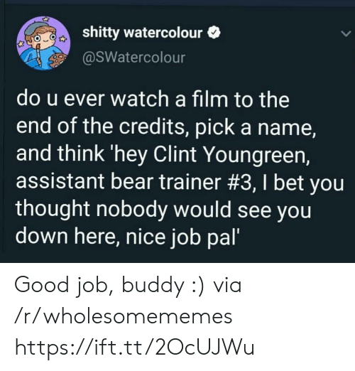 good job: shitty watercolour  @SWatercolour  do u ever watch a film to the  end of the credits, pick a name,  and think 'hey Clint Youngreen,  assistant bear trainer #3, I bet you  thought nobody would see you  down here, nice job pal' Good job, buddy :) via /r/wholesomememes https://ift.tt/2OcUJWu