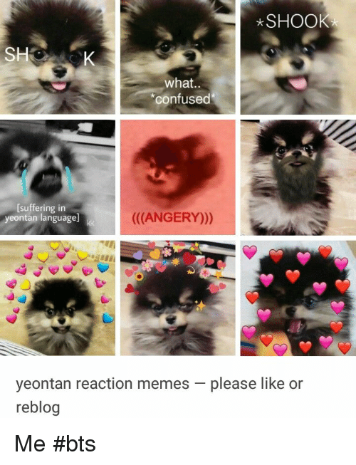 """Confused, Memes, and Bts: SHOOK  what..  """"confused  [suffering in  yeontan language  ((ANGERY)))  yeontan reaction memes-please like or  reblog Me #bts"""