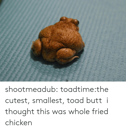 toad: shootmeadub:  toadtime:the cutest, smallest, toad butt  i thought this was whole fried chicken