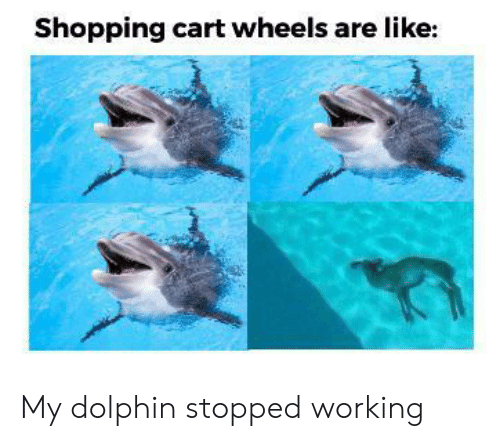 Cart: Shopping cart wheels are like: My dolphin stopped working