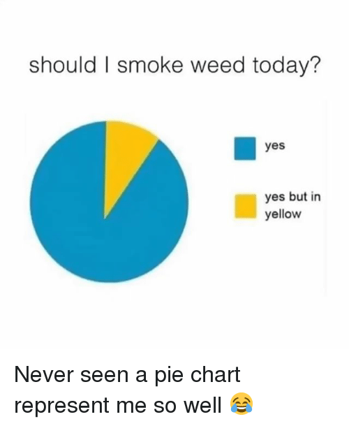pie chart: should I smoke weed today?  yes  yes but in  yellow Never seen a pie chart represent me so well 😂