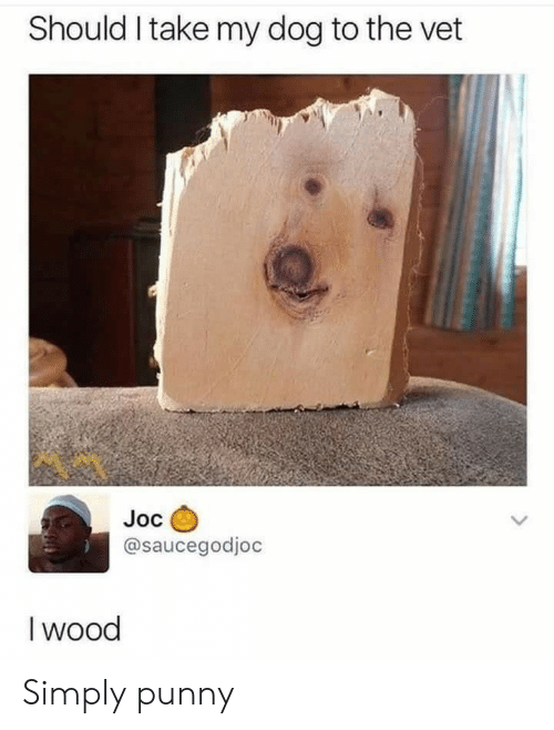Punny, Dog, and Wood: Should I take my dog to the vet  Joc  @saucegodjoc  I wood Simply punny