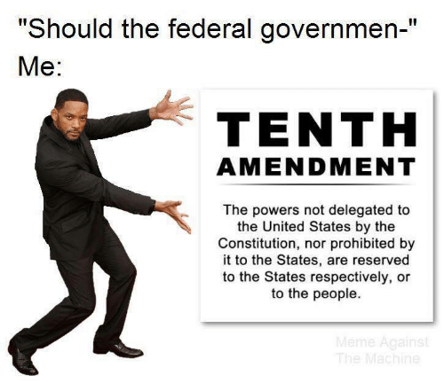 "Meme, Constitution, and United: ""Should the federal governmen-""  Ме:  TENTH  AMENDMENT  The powers not delegated to  the United States by the  Constitution, nor prohibited by  it to the States, are reserved  to the States respectively, or  to the people.  Meme Against  The Machine"