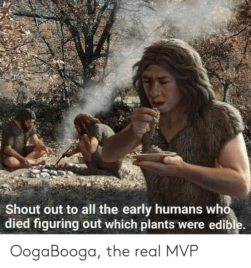 Edible: Shout out to all the early humans who  died figuring out which plants were edible. OogaBooga, the real MVP