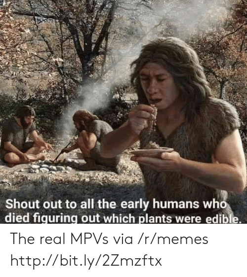 Edible: Shout out to all the early humans who  died fiquring out which plants were edible. The real MPVs via /r/memes http://bit.ly/2Zmzftx