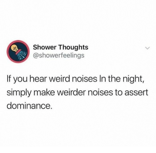 Shower, Shower Thoughts, and Weird: Shower Thoughts  @showerfeelings  If you hear weird noises In the night,  simply make weirder noises to assert  dominance