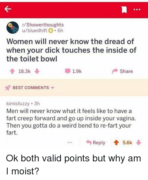 Dank, Weird, and Best: /Showerthoughts  u/bluedhift.6h  Women will never know the dread of  when your dick touches the inside of  the toilet bowl  18.3k  1.9k  Share  BEST COMMENTS  kimisfuzzy 3h  Men will never know what it feels like to have a  fart creep forward and go up inside your vagina.  Then you gotta do a weird bend to re-fart your  fart.  Reply 5.6k Ok both valid points but why am I moist?