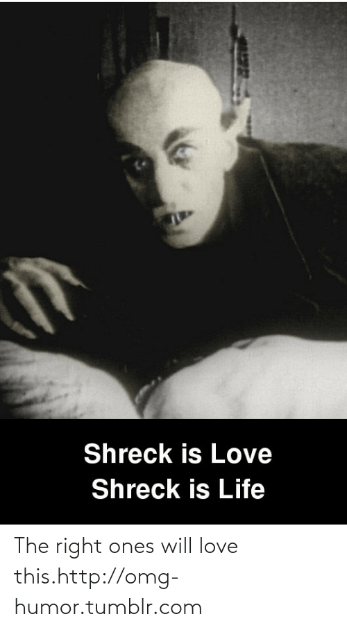 shreck: Shreck is Love  Shreck is Life The right ones will love this.http://omg-humor.tumblr.com