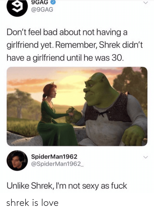 Shrek: shrek is love